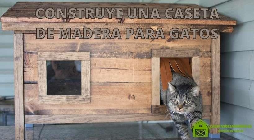 ¿Cómo construir una casa de madera para gatos?